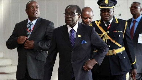 Robert Mugabe shrugs off concern about new African role
