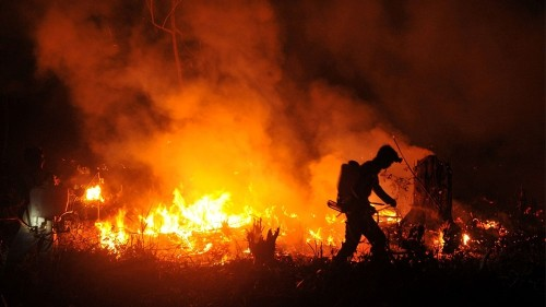 Indonesia 'doing everything' to put out forest fires - President