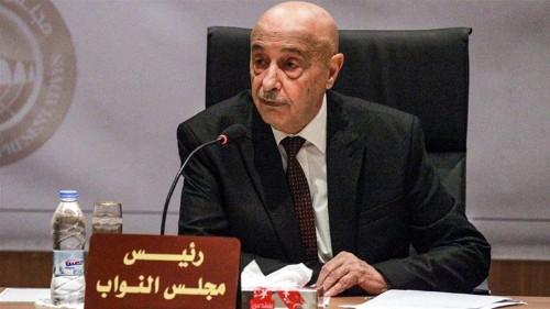 Parliament head in east Libya: Turkey troops offer 'unacceptable'
