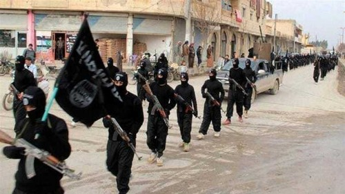 Australian 'ISIL nurse' flies home with police escort