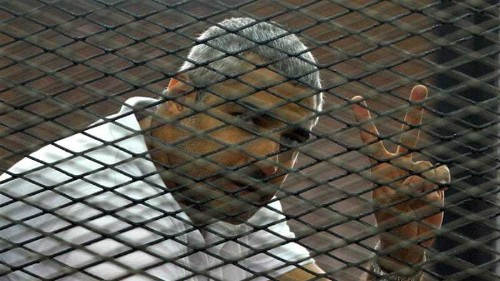 Al Jazeera's Fahmy renounces Egyptian citizenship