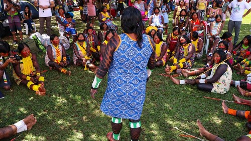'Now belongs to us': Women take lead in Brazil's indigenous fight