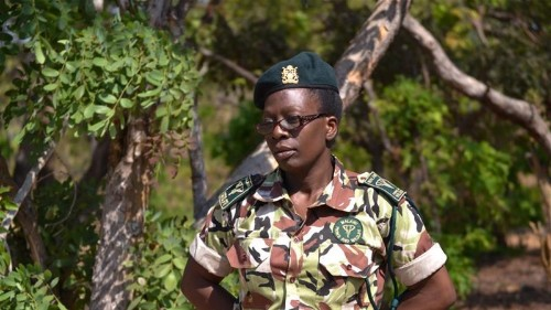 Female rangers in Malawi: 'Only the strongest survive'