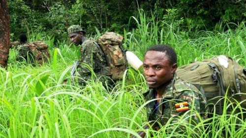 UN says LRA abductions on rise in C Africa
