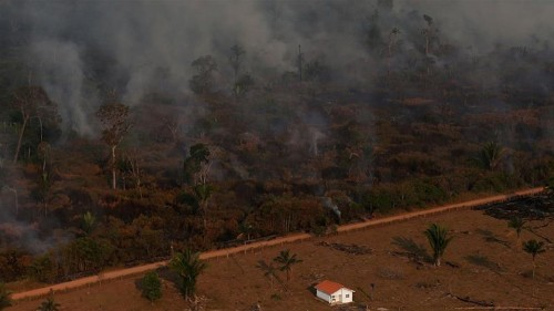 BlackRock in Amazon: 'World's largest investor in deforestation'