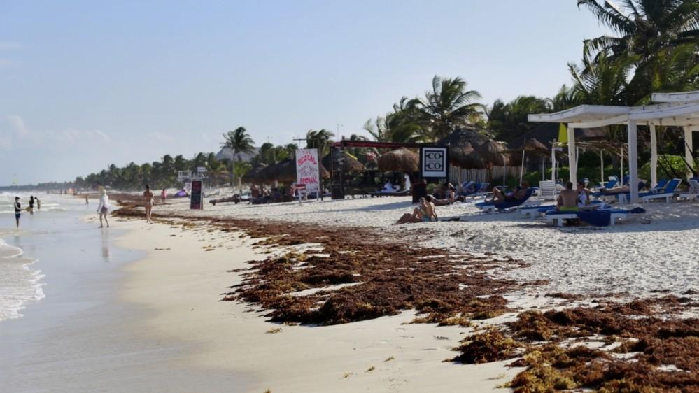 Does Mexico's coronavirus economic rescue plan fall short?