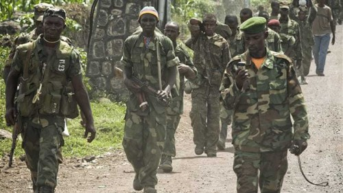 Children among group hacked to death in DRC