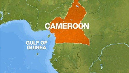 Chinese, Ukrainian seamen kidnapped in Cameroonian waters