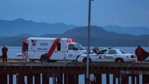 Five dead as whale-watching boat sinks off Canada