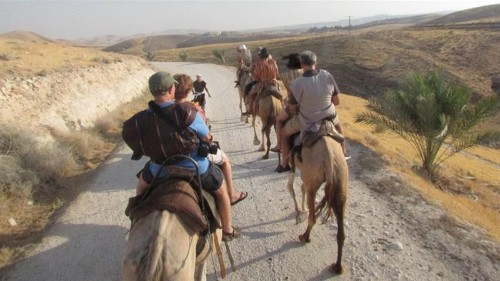 How the tourism industry underpins illegal Israeli settlements