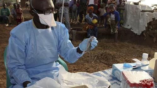 Lassa fever outbreak kills dozens in Nigeria