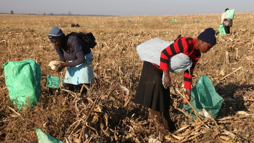 Building an Africa free from hunger and poverty
