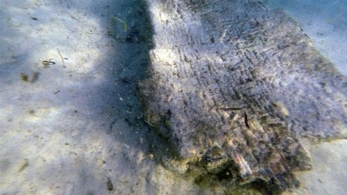 Major Roman ruins discovered underwater in Tunisia
