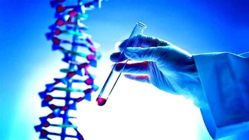 Can human genome editing be regulated?