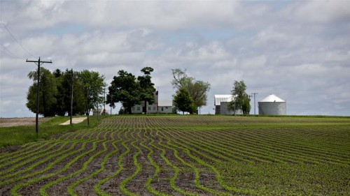China-US farm talks achieved 'good outcome': Chinese official