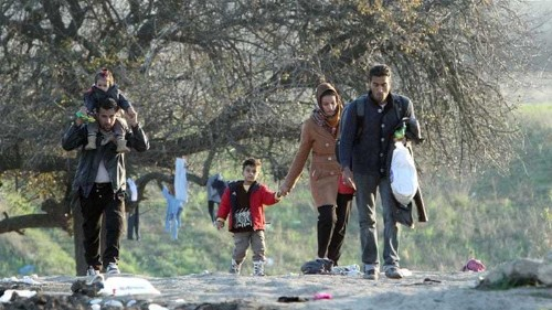 Refugee nationalities screened at borders: witnesses