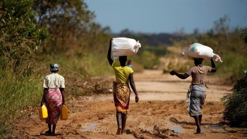 Mozambique cyclone victims 'forced to trade sex for food'