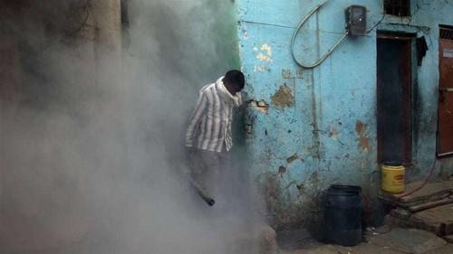 Delhi faces dengue fever outbreak