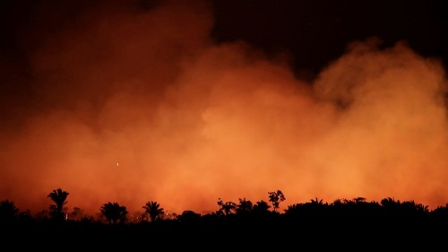 Brazil: Concerns grow over burning Amazon as probe launched