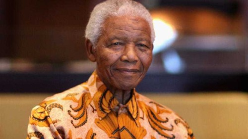Family confirms Mandela on life support