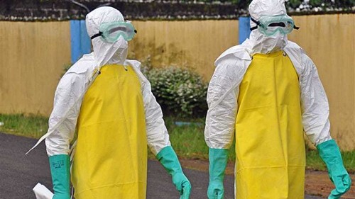 Ebola crisis: 'world is losing the battle'