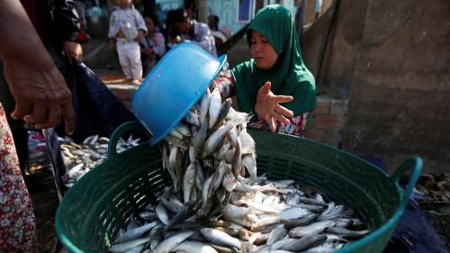Cambodia's micro-loans accused of 'predatory' lending