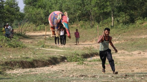 Rohingya 'tusk force' keeps refugees safe from deadly elephants