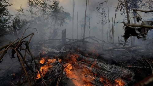Brazil announces South American meeting on Amazon fires