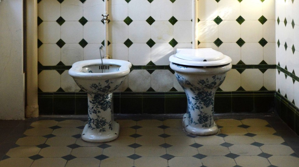 Making a Case for the Bidet