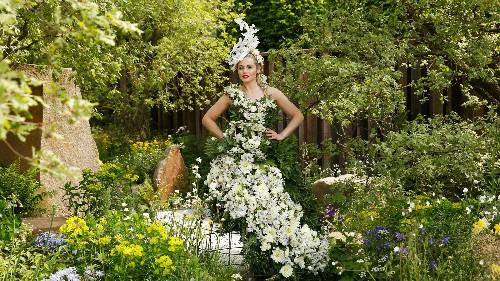 Go Inside the Chelsea Flower Show 2017 in London