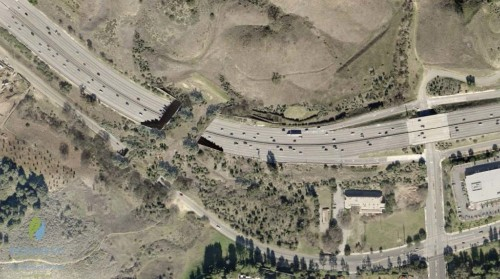 California is Set to Build the World's Largest Wildlife Crossing