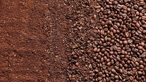 The Absolute Most Important Factor in Brewing Great Coffee