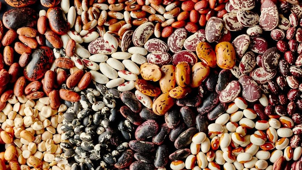 April Horoscopes: Which Bean Are You? (Yes, Beans)