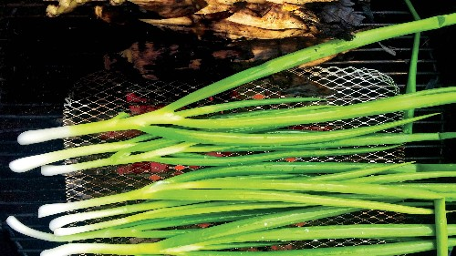 I Make Grilled Scallions at Every Cookout, and Will Until the End of Time