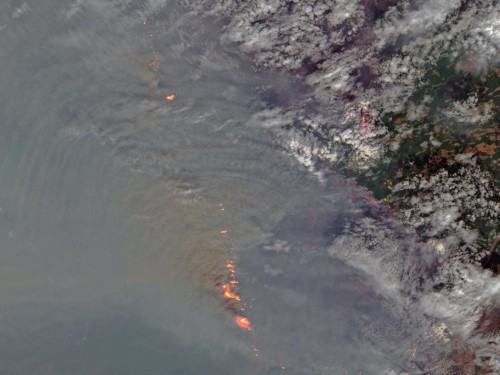 The northernmost reaches of the Earth are on fire. Here's what this record-breaking hot summer looks like from space.