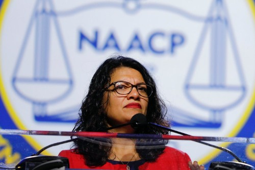 Tlaib's grandmother wishes 'ruin' on Trump after he tweets about her