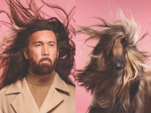 A photographer captured photos of 15 pairs of dogs and their owners that look hilariously alike