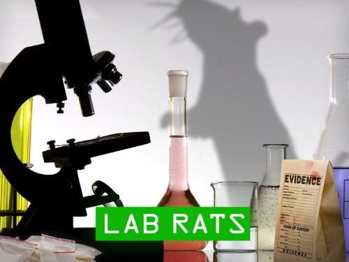 FORGET CSI: A Disaster Is Happening In America's Crime Labs