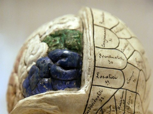 4 Ways Your Brain Can Ruin Your Chances For Success