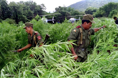 Mexico just approved a major change to its drug policy