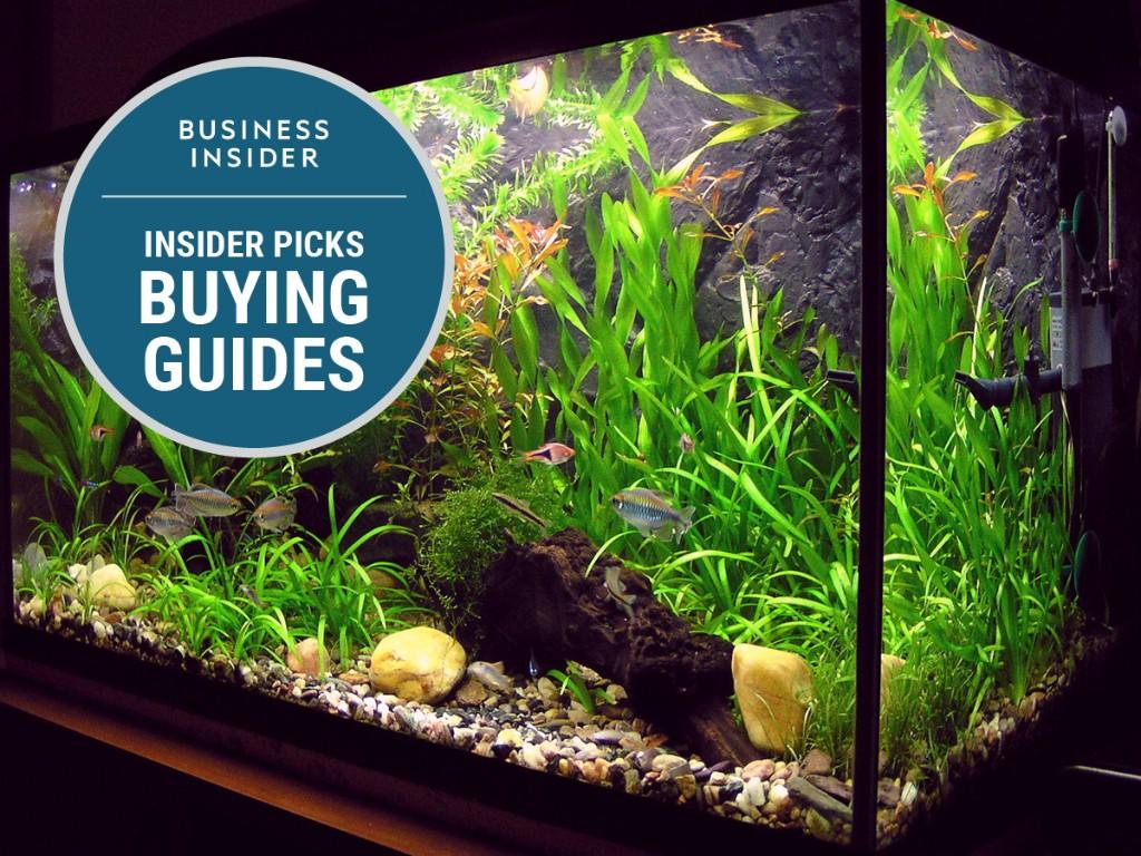 Aquaria - Magazine cover