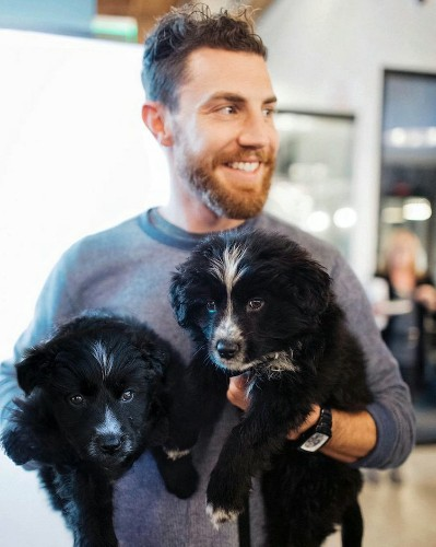 How one man quit his job to travel the US with 2 dogs he rescued from the side of the road