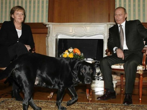 George W. Bush's Story About Vladimir Putin's Dog Explains So Much