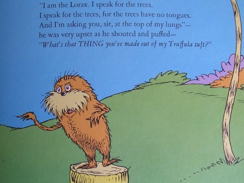 Cypress trees that inspired 'The Lorax' are vulnerable to extinction