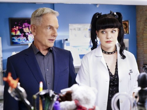 'NCIS' Pauley Perrette's assault allegations — what to know