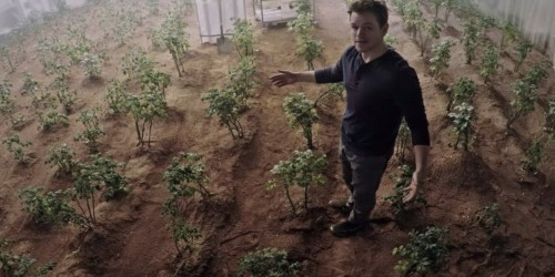 The truth about growing potatoes on Mars