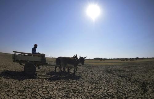 Southern African leaders meet as region faces food crisis