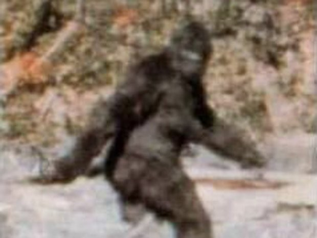 University executive director in trouble for blowing school money hunting Bigfoot