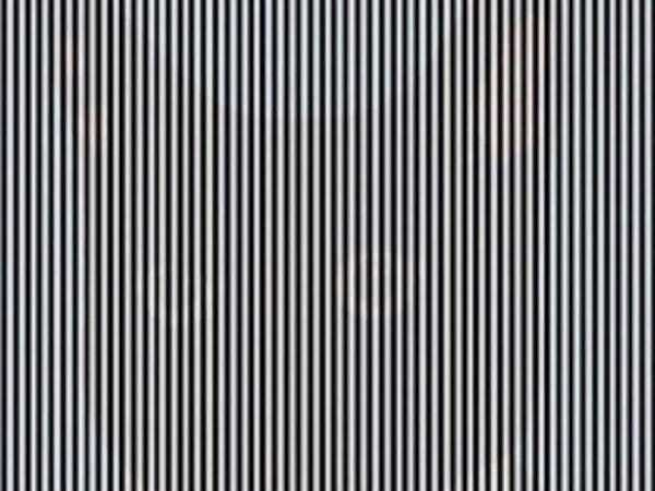 Optical illusion: shake your head to see this picture - Business Insider