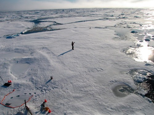 The Arctic sea ice collapse is happening before our eyes — and it's a worrisome sign of what's to come